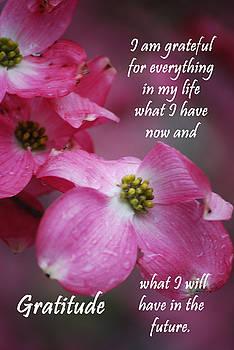 Michelle  BarlondSmith - Affirmation Series - Gratitude