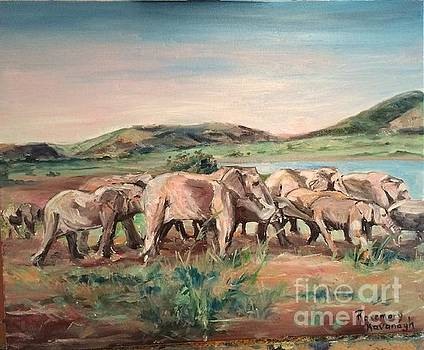 Africa by Rosemary Kavanagh