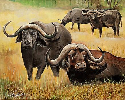 African Buffalo by Bill Dunkley