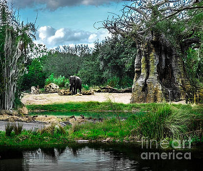 African Bush Elephant Playground by Gary Keesler