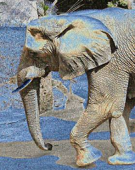 African Elephant Mosaic by Steven Howes