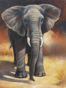 African Elephant by Oksana Zotkina