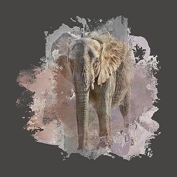Nikolyn McDonald - African Elephant - Transparent