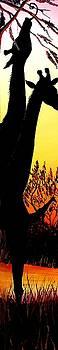 African Giraffe At Sunset #36 by Portland Art Creations