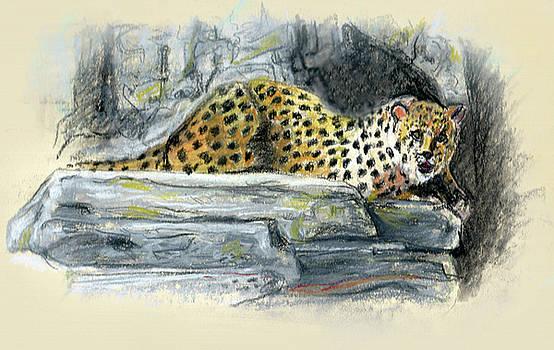 Olga Kaczmar - African Leopard