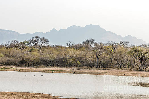 African Mountain by Petrus Bester