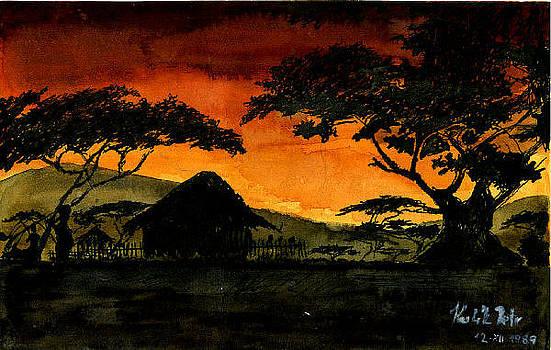 African odysea by Peter Kulik