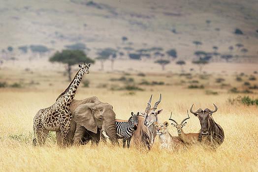 African Safari Animals in Dreamy Kenya Scene by Susan Schmitz