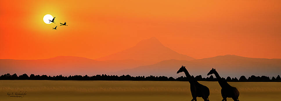 African Serenity by Kay Kochenderfer