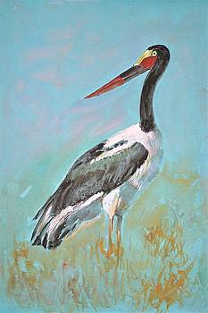 African stork by Khalid Saeed