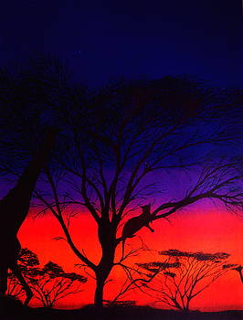 African Sunset by Eric Hausel