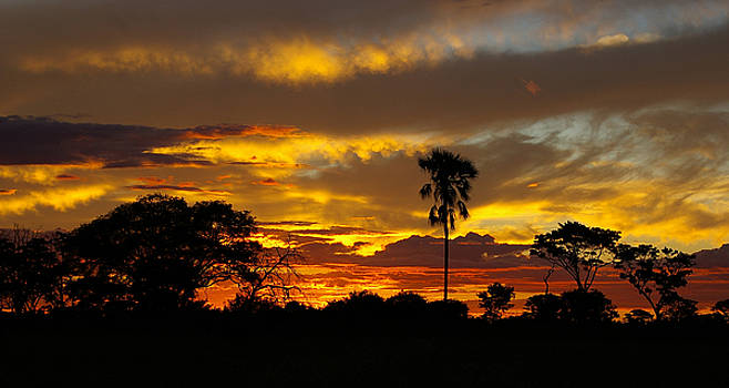 African Sunset by John Lechner