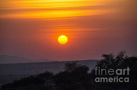 Pravine Chester - African Sunset