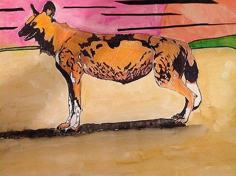 African Wild Dog by Robert Hilger