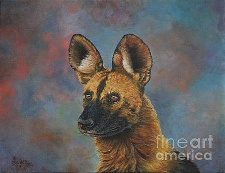 African Painted Wild Dog by Bob Williams