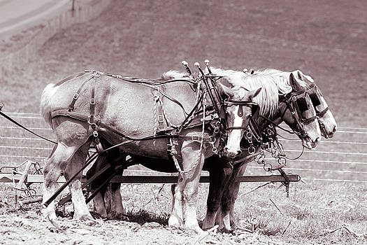 After Chores by Susie Gordon