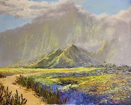 After Rains, Kahaluu  by Ed Furuike