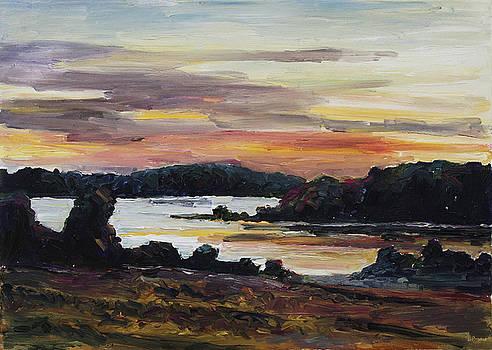 After Sunset at Lake Fleesensee by Barbara Pommerenke