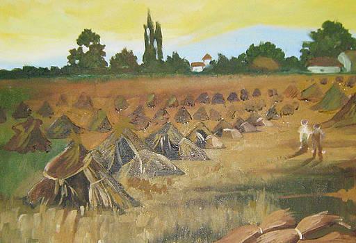 After the harvest by Akhilkrishna Jayanth