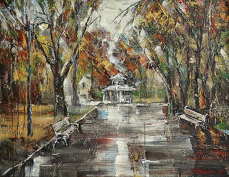After the Rain III by Stefano Popovski