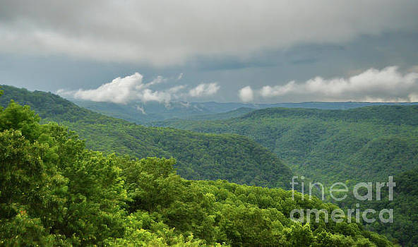 After The Rain - The Bluestone Gorge at Pipestem State Park by Kerri Farley