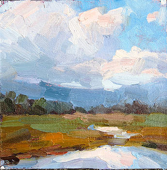 After the Storm by Steven McDonald