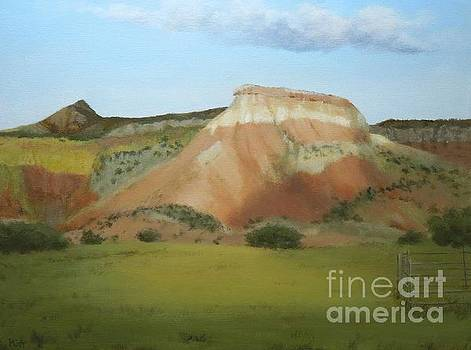 Afternoon at Ghost Ranch by Phyllis Andrews
