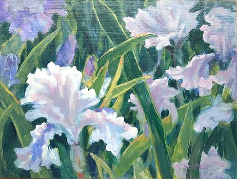 Afternoon Iris by Tamara Keiper