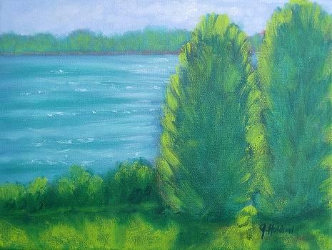 Afternoon Light Lake Mackintosh by Justin  Holdren
