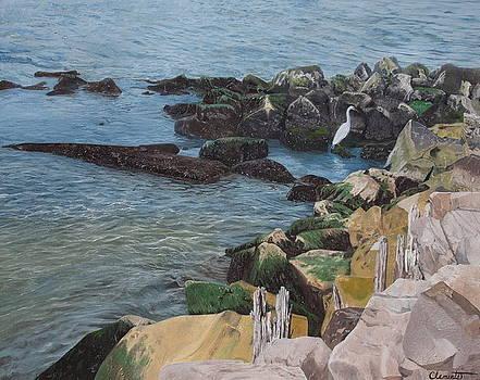 Afternoon on Barnegat Bay  by Barbara Barber