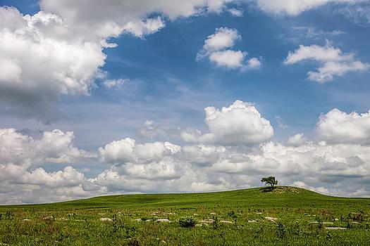 Scott Bean - Afternoon on the Prairie