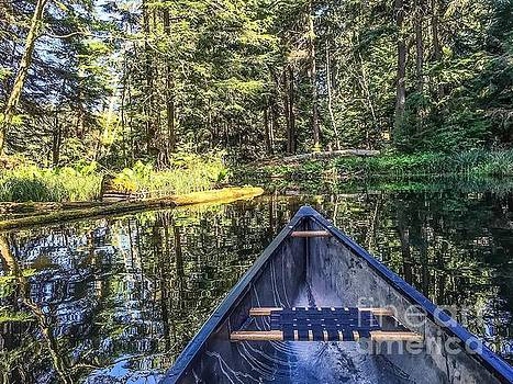 Afternoon Paddle by William Wyckoff