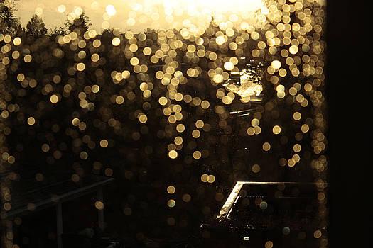Afternoon Rain From My Window by Cristina Rettegi