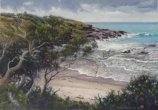 Afternoon Storm  Arrawarra Headland NSW by Louise Green