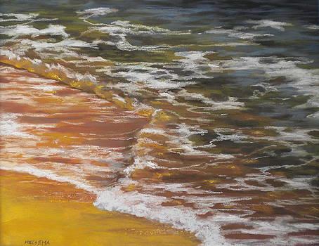 Afternoon Swim by Cheri Halsema