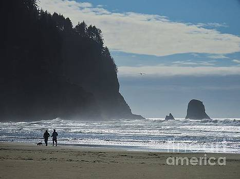 Cape Meares by Michele Penner