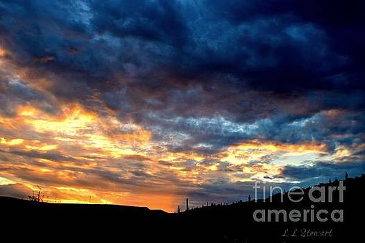 Again The Sun Rises by L L Stewart