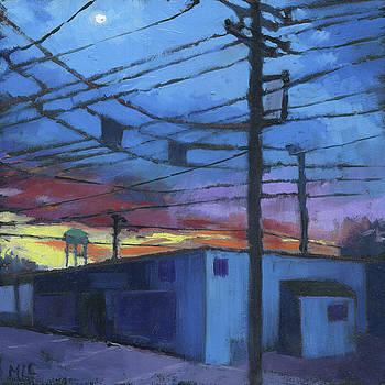 Against the Sunset by Marla Laubisch