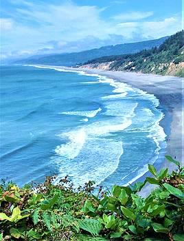 Lisa Dunn - Agate Beach