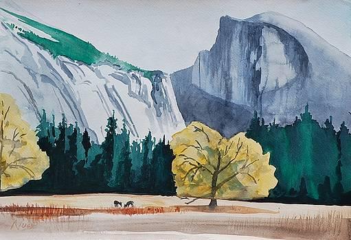Ahwahnee Meadow by James Nuce