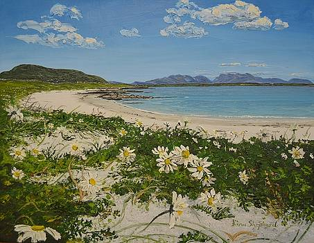Aillebrack Beach Ballyconneelly Connemara Ireland by Diana Shephard