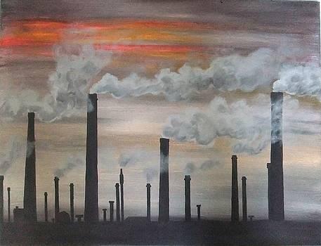 Air pollution by Annemeet Hasidi- van der Leij