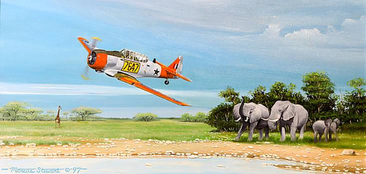 Air Safari by Marc Stewart