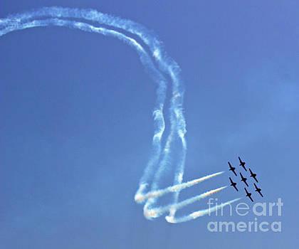 Air Show 8 by Cheryl Del Toro