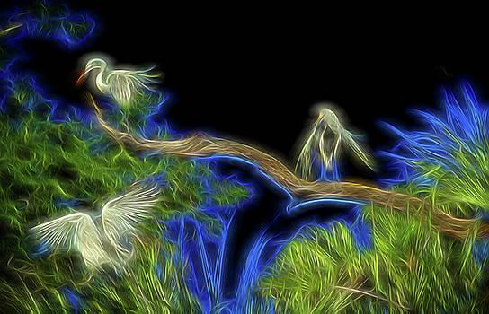 Air Spirits 8 by William Horden