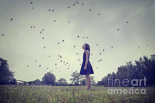 Airborne by Evelina Kremsdorf