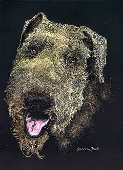 Airedale Terrier Portrait by Jessica Kale