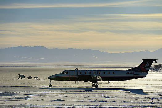 Reimar Gaertner - Airplane taking off from Barter Island LRRS airport Kaktovik Ala