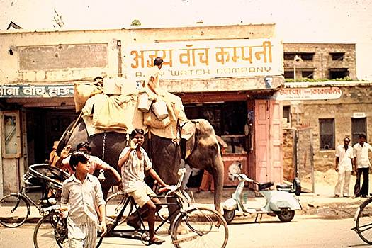 Ajmer, Rajasthan, India by Barron Holland