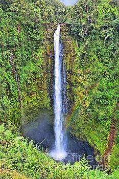 Akaka Falls Big Island by DJ Florek